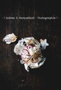 andrea-marquetant-food (1)