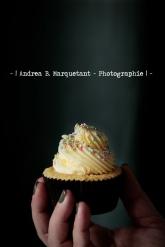 mandel-vanilla-cupcake-2
